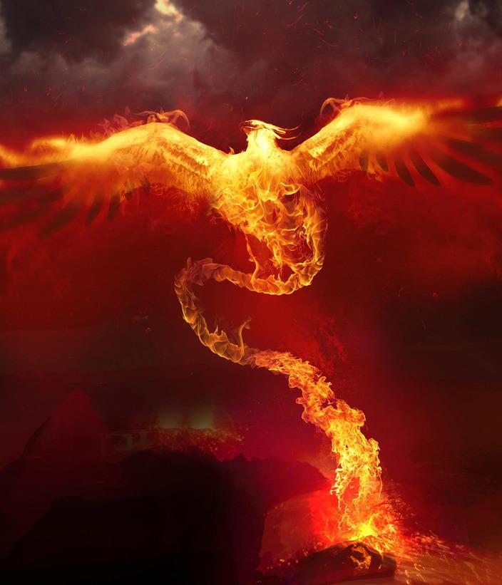 phoenix nebula hd - photo #19