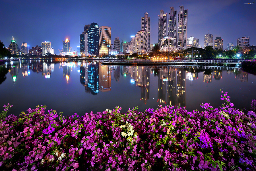 bangkok in the garden - beautiful photography